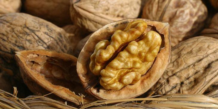 walnuesse-enthalten-omega-3-fettsaeuren