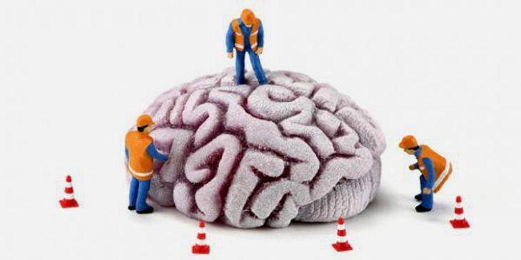 Baustelle Gehirn