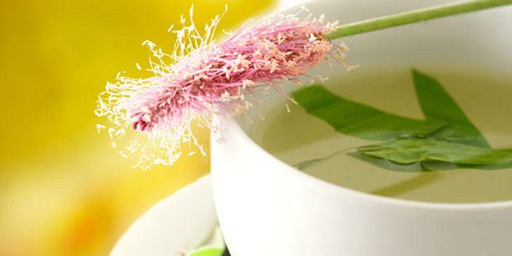 Tee bei Heuschnupfen