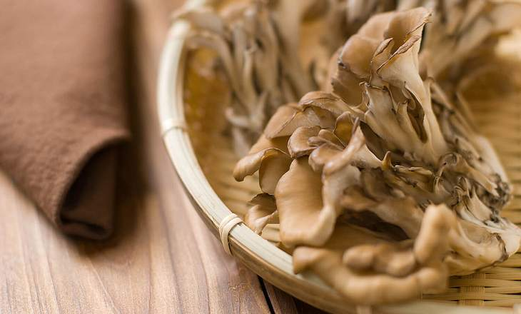 Getrockneter Maitake-Pilz