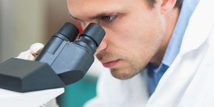 Unter dem Mikroskop kann der Arzt Erreger bestimmen