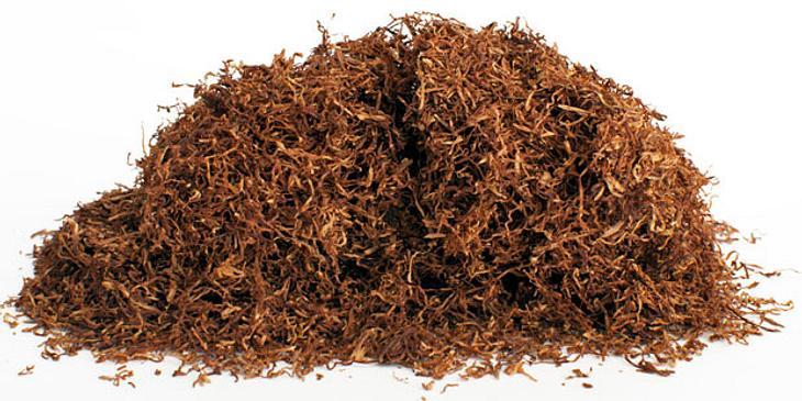 Tabak, egal in welcher Form konsumiert, enthält Nikotin