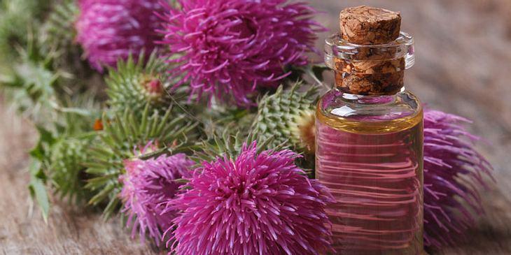 Klettenöl gegen Neurodermitis