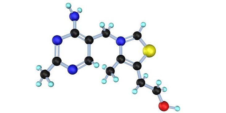 Yunker Inhaltsstoffe Vitamin B1
